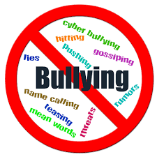 Bullying Resource for Parents and Students  - HIB Presentation