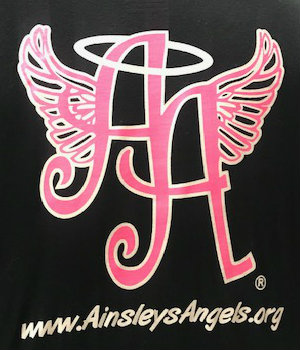 Innovation Committee Brings Ainsley's Angels to Osage